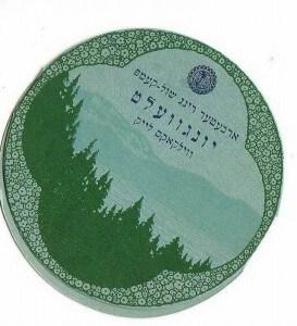 Camp Yungvelt Logo